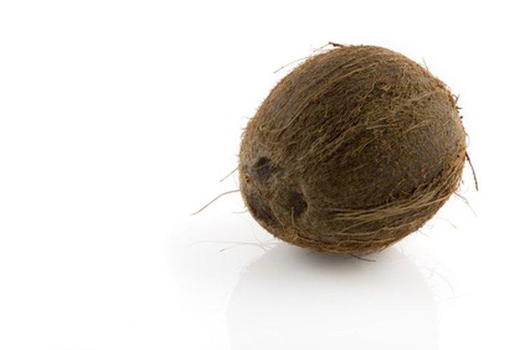 El humilde coco tiene un sorprendente número de usos.