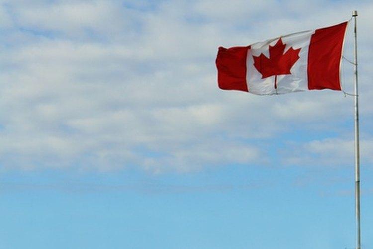 La bandera de Canadá cuenta con un bosquejo aproximado de la hoja de arce.