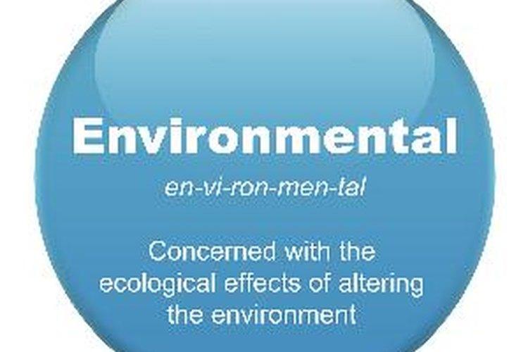 La historia de los sistemas de gestión ambiental.