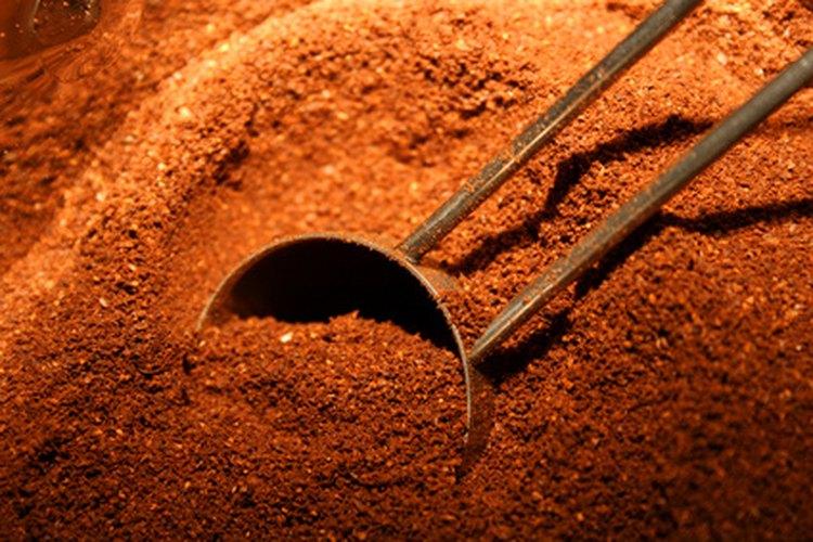 El café molido mata y repele a las hormigas.