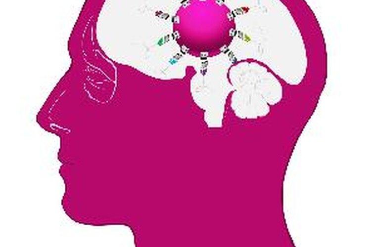 El funcionamiento interno del cerebro está altamente influenciado por los alrededores.
