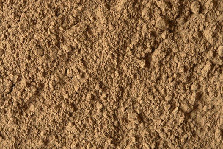 Polvo de cacao.
