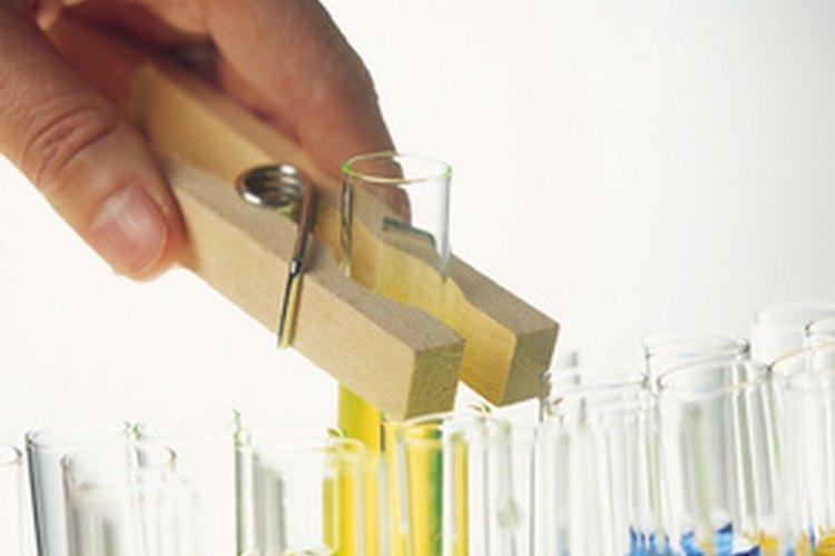 Algunas personas con un título en biología pueden elegir trabajar en investigación.