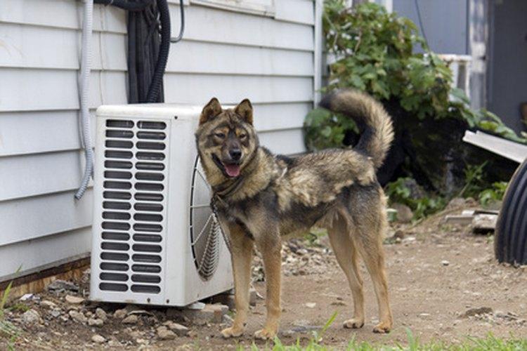 Algunas unidades de aire acondicionado central son más eficientes que otras.