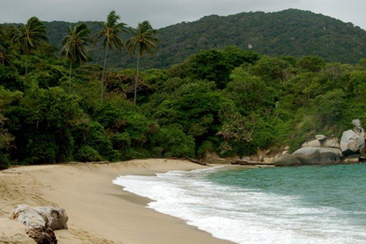 La cumbia nació en la costa norteña de Colombia, donde fueron traídos los esclavos de la religión Yoruba para trabajar en plantaciones.