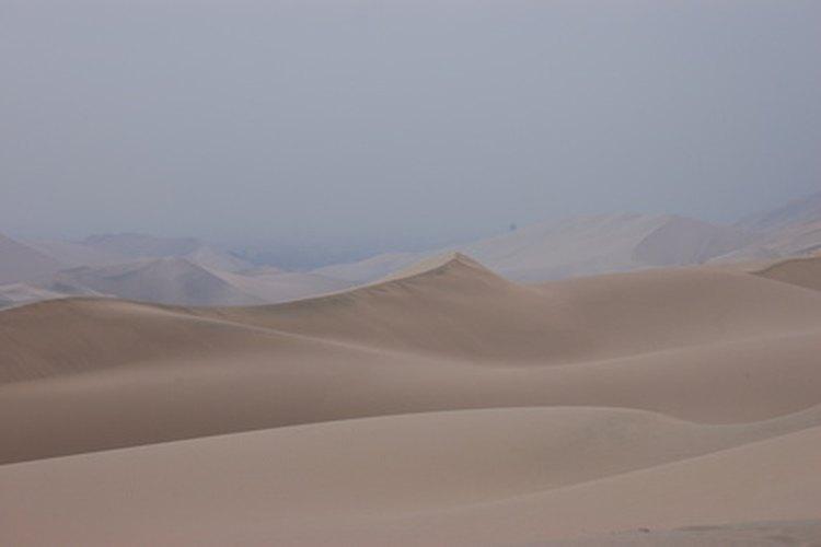 Los desiertos se caracterizan por su clima extremo.