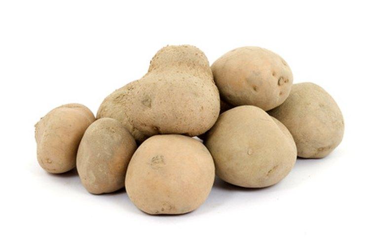 Las papas, maíz, arroz, tapioca y trigo son alimentos con altos contenido de almidón.