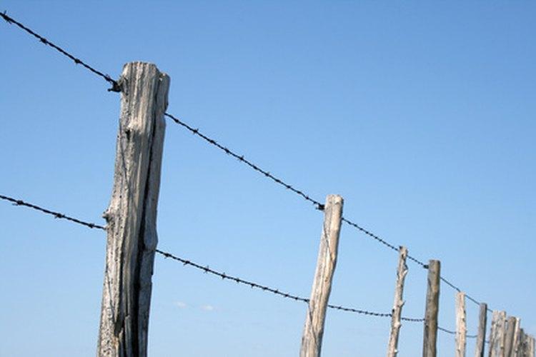 El bórax y el diésel pueden utilizarse para ayudar a preservar la madera en tu propiedad.
