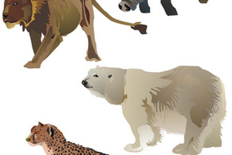 Miles de animales afrontan la extinción sin la intervención humana y mejor protección.