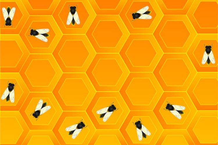 Las abejas aprenden de otras a cómo polinizar las flores y a recoger la miel.