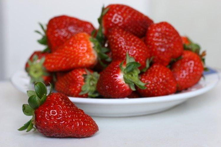 La estación pico de la fresa es desde abril hasta junio.