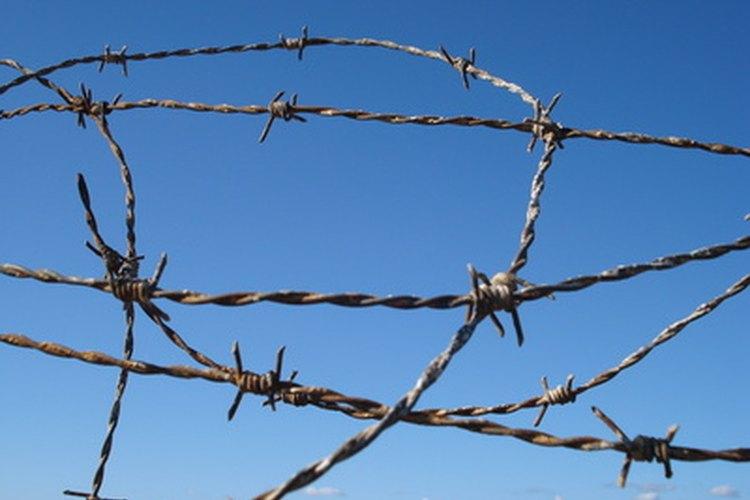 Prepárate para la difícil tarea de visitar a un prisionero.