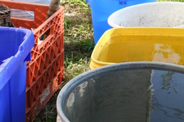 Los cubos plásticos son un elemento útil en el hogar siempre y cuando estén limpios.