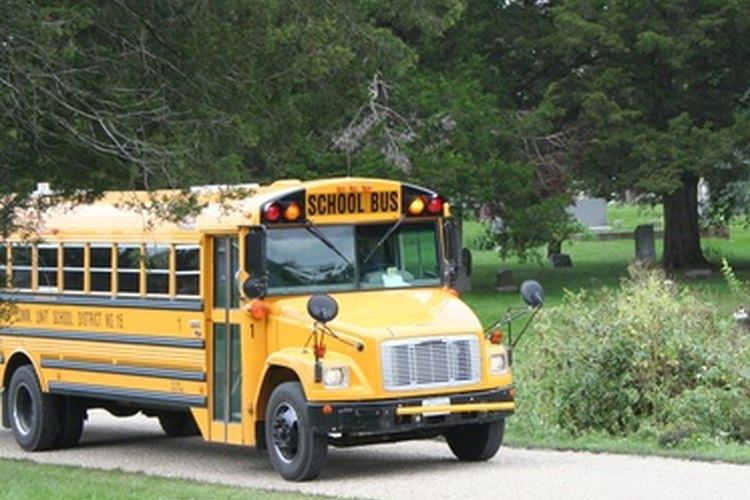 Los niños tienen que esperar el autobús en la hierba o en la acera.
