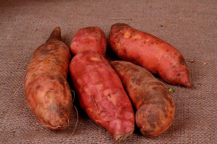 Batatas frescas.