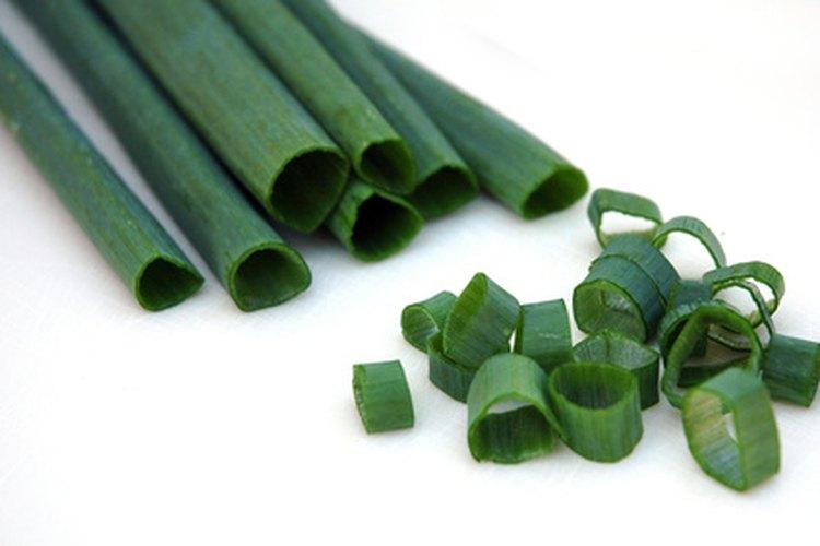 Para ensaladas y guarniciones, corta la cebolla de verdeo en círculos pequeños.