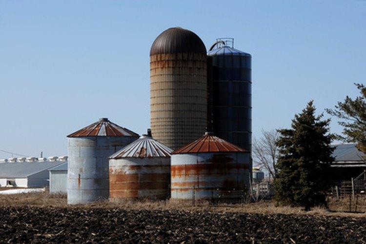 Los cestos y silos son utilizados para almacenar el trigo antes de ser enviado a distintas locaciones.