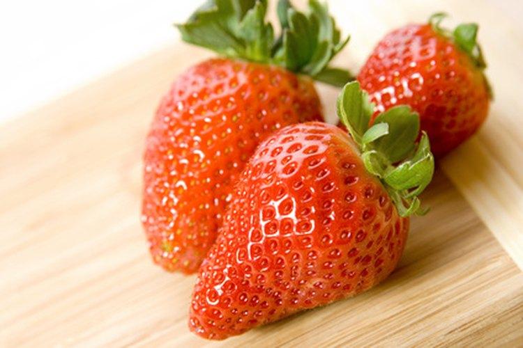 Las fresas requieren sol pleno para una máxima producción.
