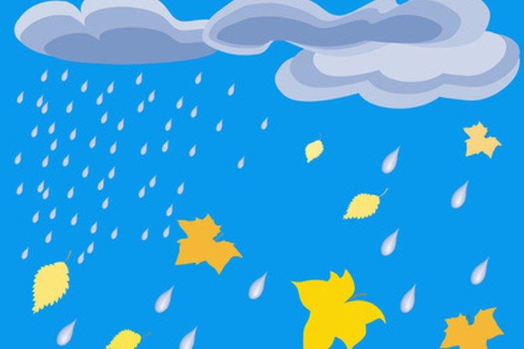 Durante las lluvias más intensas, la fosa séptica puede recibir tal torrente de agua que puede entrar en el sistema.