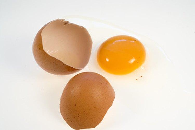 El huevo crudo batido es un dos en uno, champú y acondicionador.