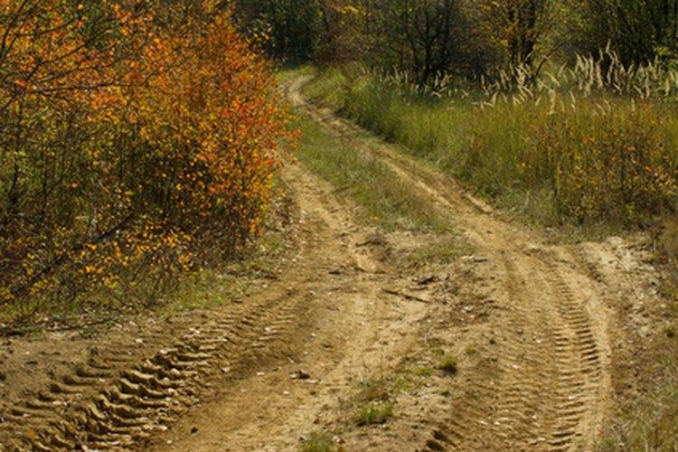 Las actividades recreativas humanas como el off-road y las cabalgatas han segmentado aún más la región de los pinos albany, dejando a las mariposas karner con muy poco de su hábitat natural.