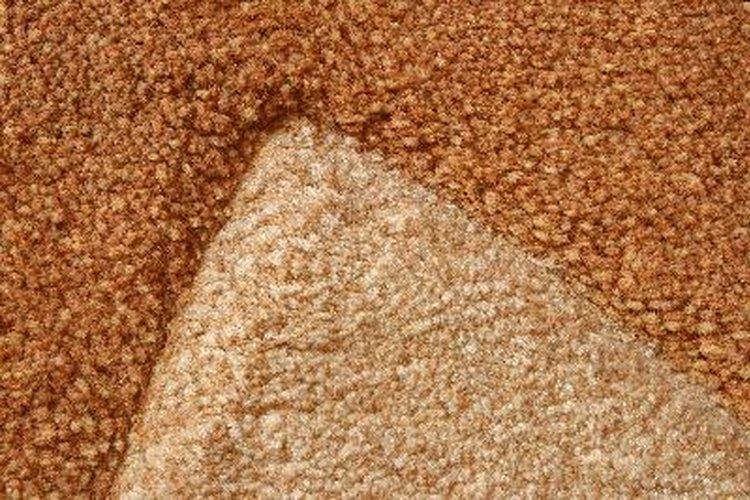 La mejor forma de limpiar alfombras - Como limpiar una alfombra en seco ...