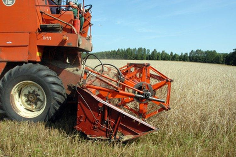 Una cosechadora reduce lo tedioso en el proceso de cosechar trigo.