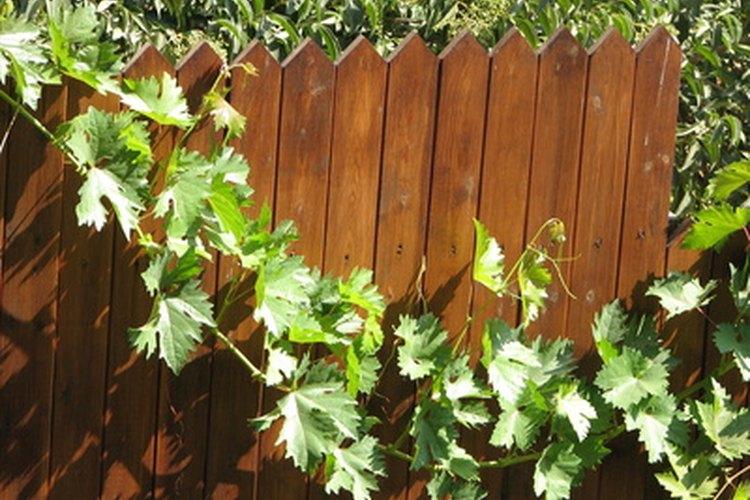 Una cerca de privacidad de madera es atractiva, pero es más costosa que una de alambre.