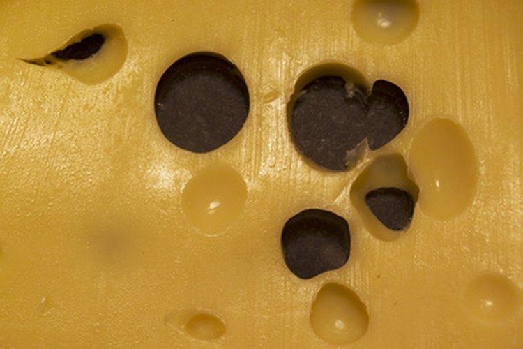 Consume leche pasteurizada grado A y productos lácteos como quesos envasados comercialmente como el cheddar suave o medio, mozzarella, Parmesano o Suizo.