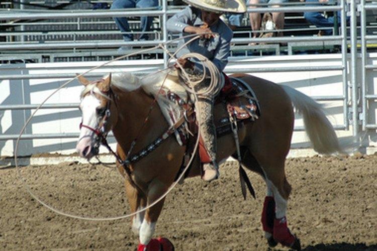 Presentes hoy en los rodeos, los vaqueros mexicanos tienen una historia más profunda que dar entretenimiento.