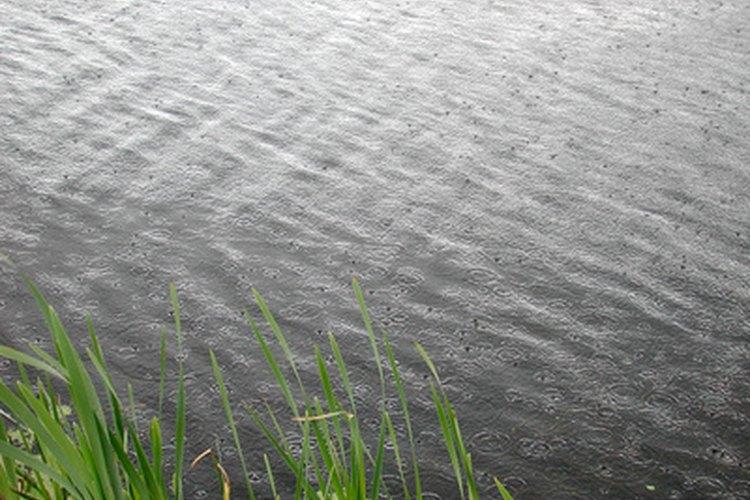 El agua es un material increíblemente conductor que absorbe la energía solar con facilidad.