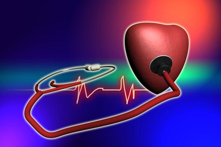 El corazón es un órgano muscular del sistema circulatorio cuya función es distribuir la sangre a través de todo el cuerpo.