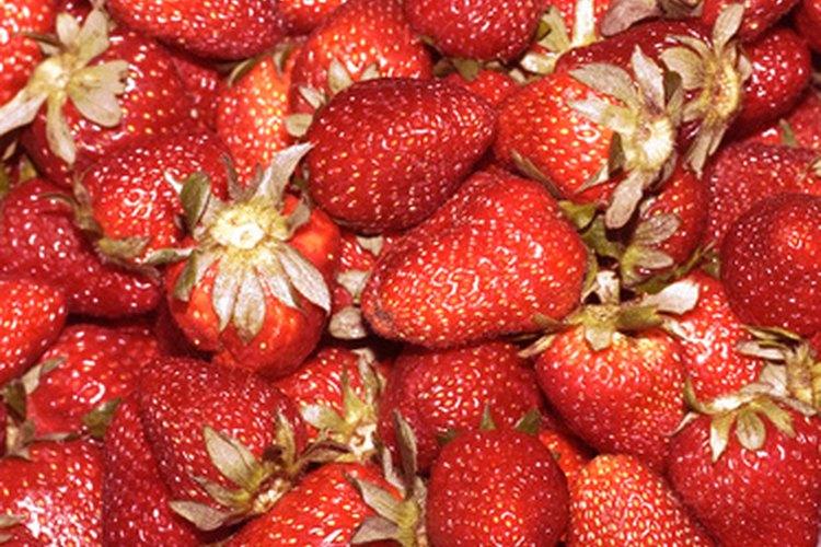 Utiliza fresas recién cortadas o compradas para hacer jalea.