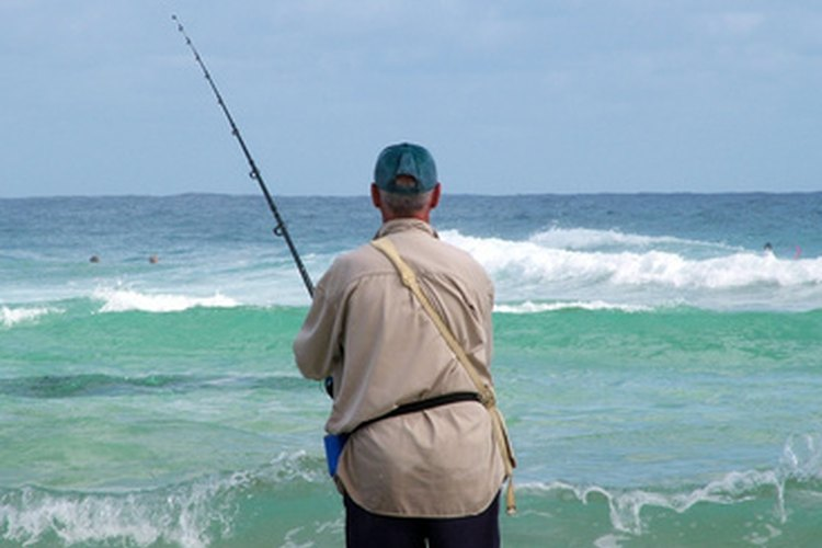 Con la correcta caña, la pesca desde la costa puede ser gratificante.