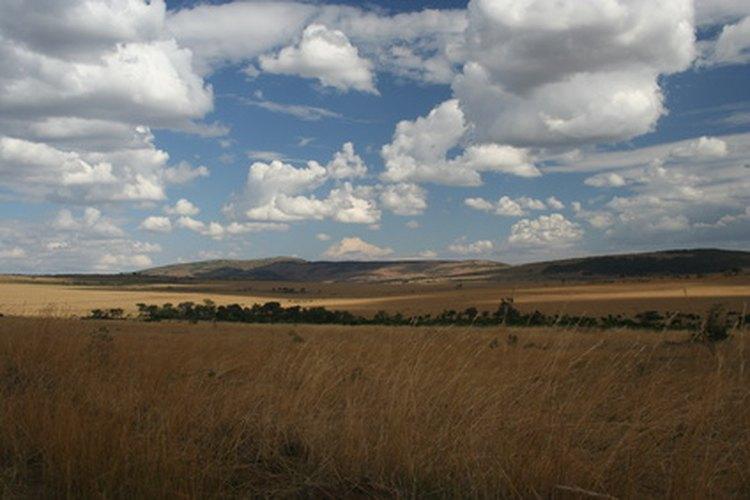Los safaris africanos de caza en 1950 fueron la primera forma de ecoturismo.
