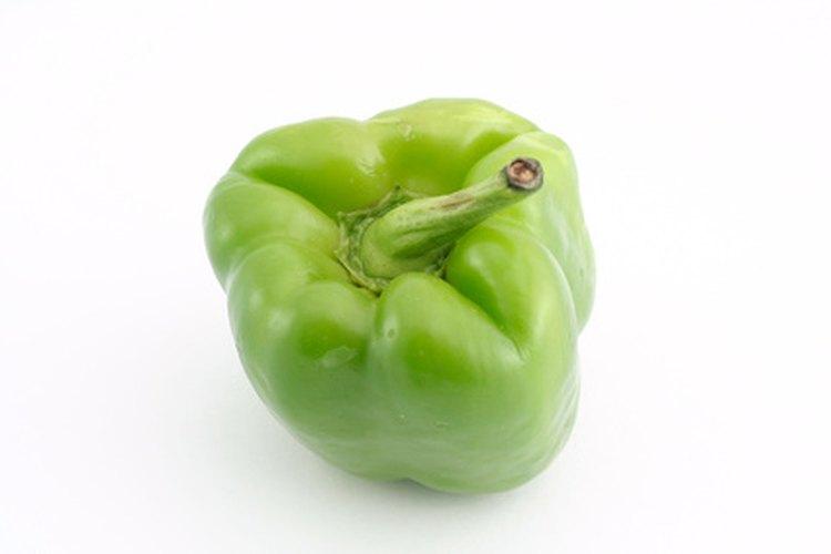 Una pequeña cantidad de nicotina puede encontrarse en las hojas de la planta del pimiento verde.