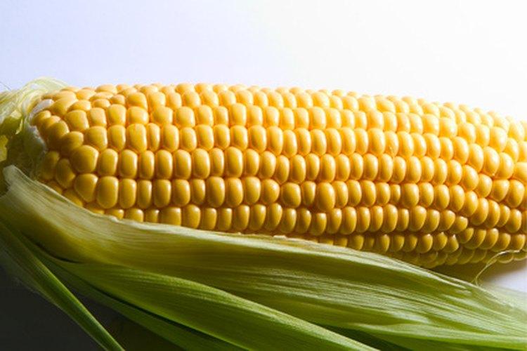 Puedes cocinar la mazorca de maíz congelada de la misma forma que cocinas el maíz fresco, aunque toma un poco más de tiempo.