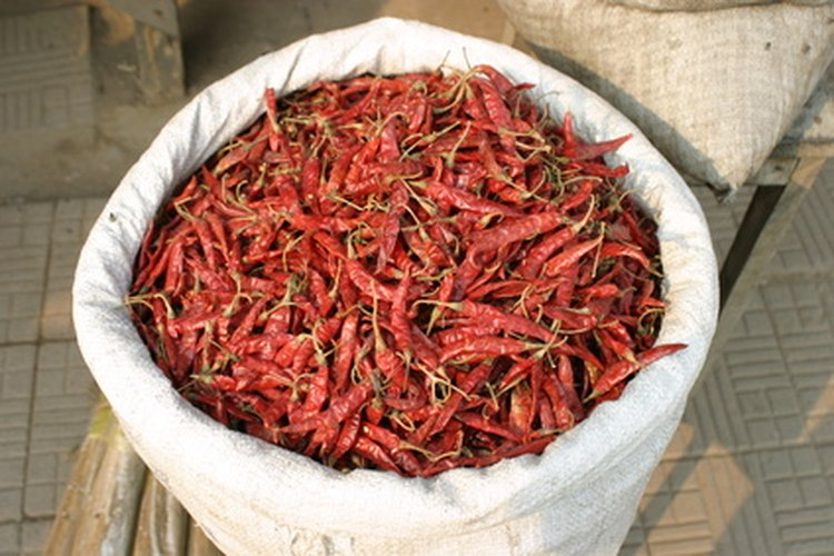 El chile guntur es utilizado para hacer platillos picantes hindúes y thai.