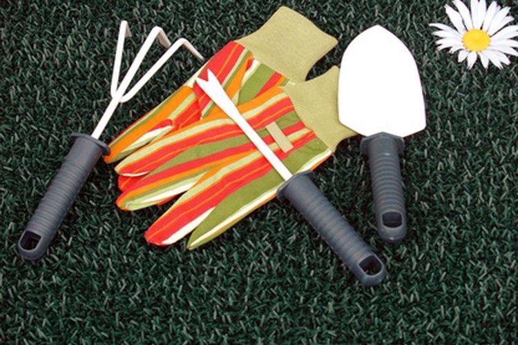 Las paletas y los cultivadores manuales son las herramienta de jardín más utilizadas.