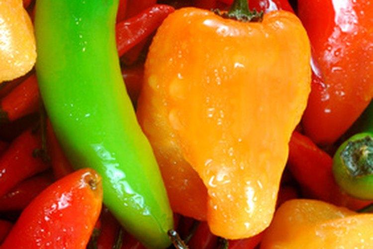 Cualquier tipo de pimiento puede ser usado para reemplazar el sabor del chipotle