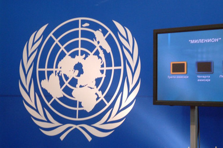 Los documentos como la Declaración de las Naciones Unidas deben citarse adecuadamente.