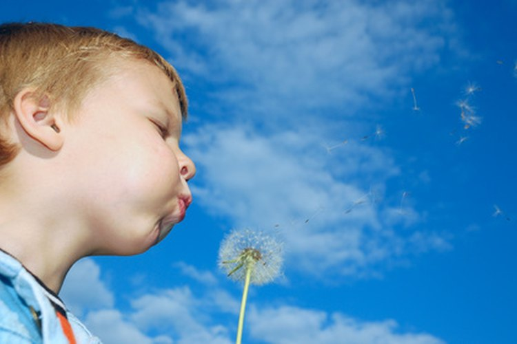 A través de la exposición a experiencias reales el niño podrá aprender cómo funciona el mundo real.