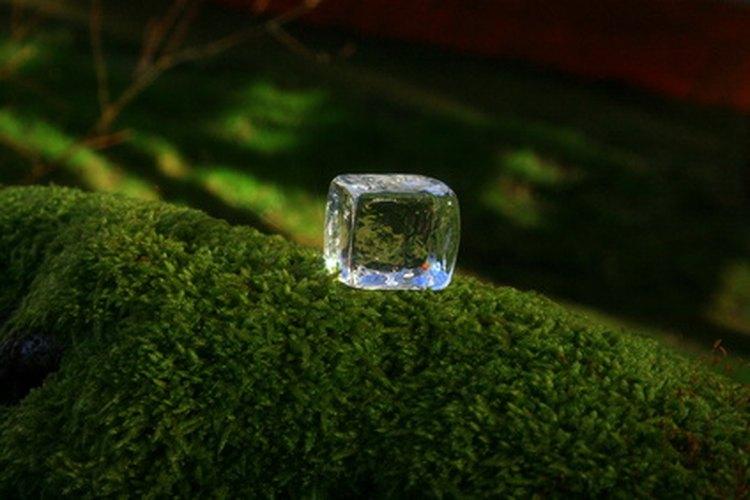 Crea cubos de hielo ficticios para muestras.