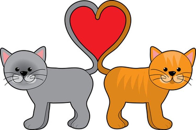 Los gatos por lo general tratan de asegurarse de que sus propietarios sepan lo que quieren.