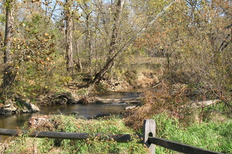 Maryland ofrece una amplia gama de lugares de pesca.