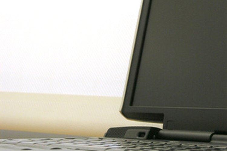 El diagnóstico con una computadora portátil permite una fácil actualización y mejora como los cambios de codificación.
