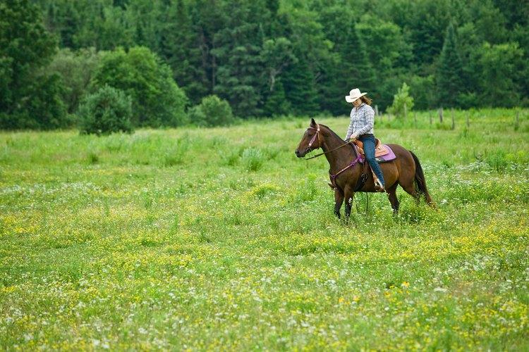 Los vaqueros son personajes clásicos del viejo oeste.