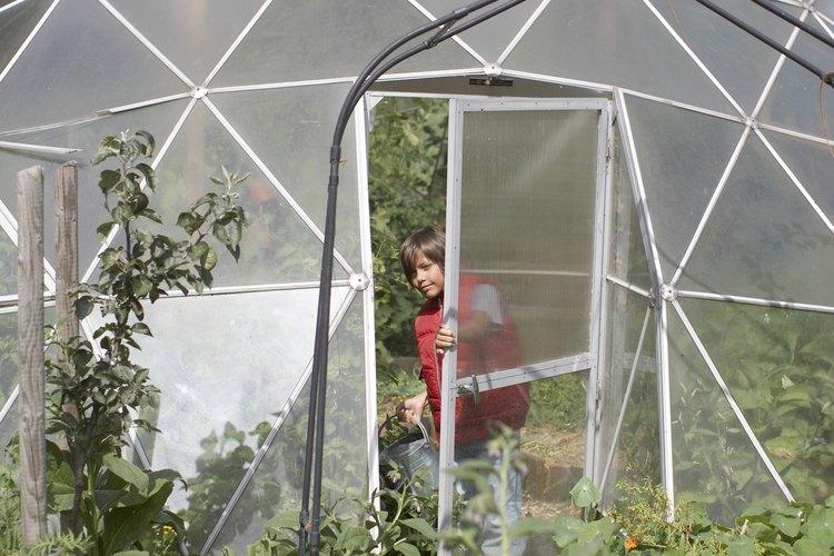 Muchos invernaderos y jardines de invierno en todo el mundo utilizan techos de policarbonato.