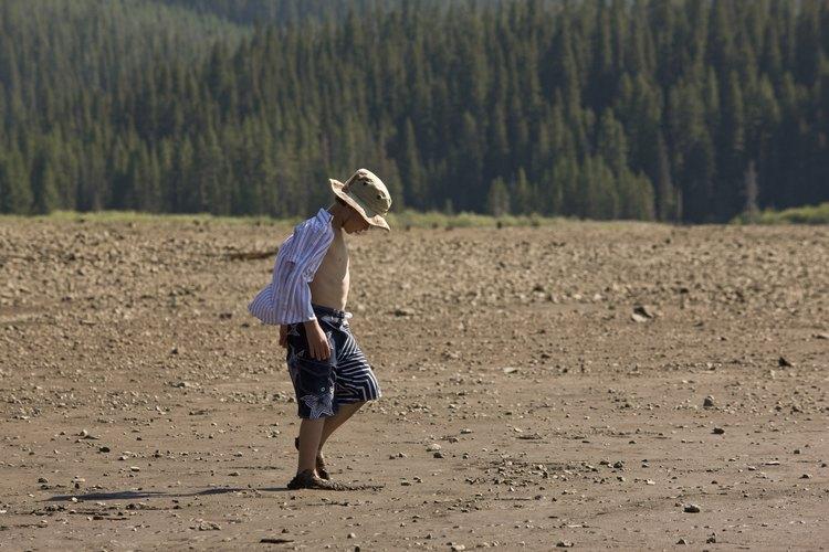 La agricultura de un cultivo causa el agotamiento del suelo.