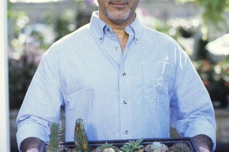 Los invernaderos solían ser proyectos de pasatiempo para los jardineros acaudalados.
